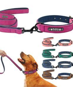 Hundehalsband mit Namen 20