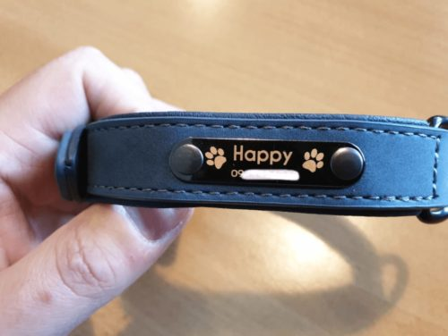 Hundehalsband mit Namen Review 39